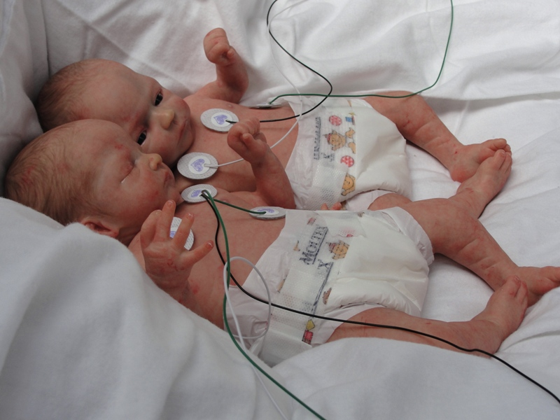 Camden Shown With Her Twin Corbin Reborned By S Real